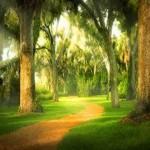 Vreţi să ştiţi ce este adevărata spiritualitate?