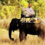 Razbunarea elefantului