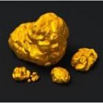Lingoul urias de aur