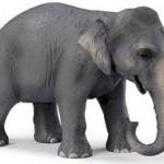Vizitatorii si elefantul